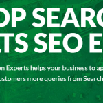 SEO Services Expert